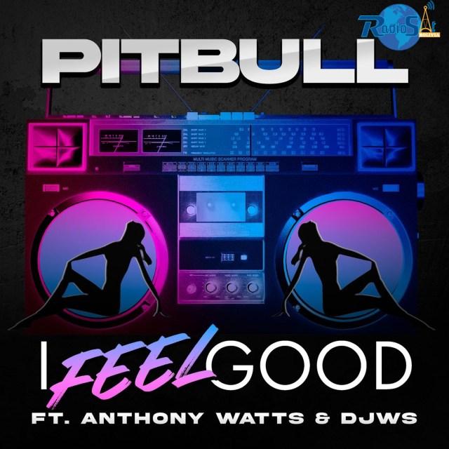 Pitbull Feat. Anthony Wattsv & DJWS - I Feel Good